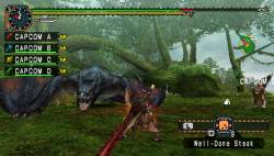 monster-hunter-freedom4