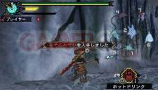 Monster Hunter Portable 3rd 022