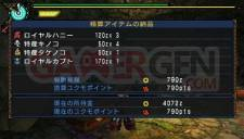 Monster Hunter Portable 3rd 016