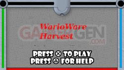 warioware-6