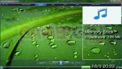 Windows Media Player 11 - 500 - 2