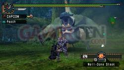 monster hunter unite (4)