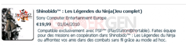 shinobido-les-legendes-du-ninja-pss-01-04-2010
