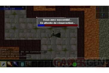 Warcraft PSP Online 009