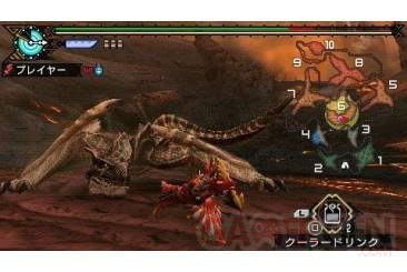Monster Hunter Portable 3rd 010