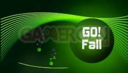 1256699439_gofallPIC1