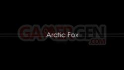 Arctic Fox - 550 - 1