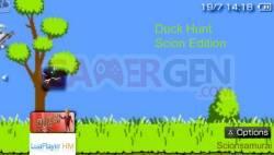 duck-hunt (3)