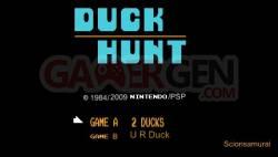 duck-hunt (4)