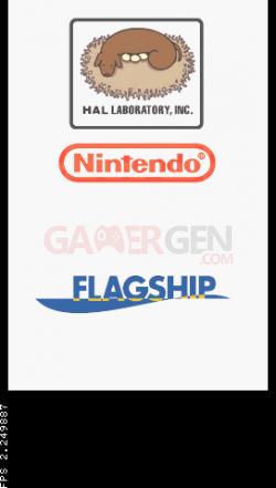 Emulateur Nintendo DS 2