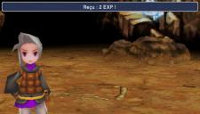 Final Fantasy III (FR) (5)