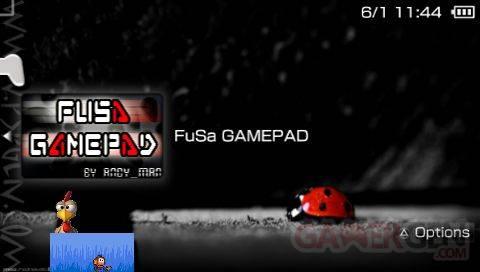FUSA joypad - 1