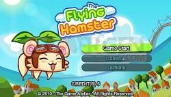 hamster_002