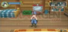 harvest-moon-hero-of-leaf-valley-20100329040338500
