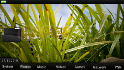 Joomla's Theme - 550 - 5