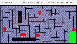 Labyr1t 2d (5)
