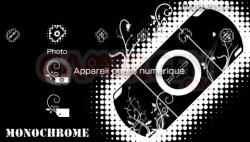 Monochrome (4)