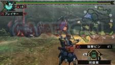 Monster Hunter Portable 3rd 001