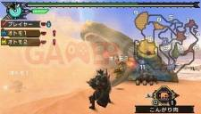 Monster Hunter Portable 3rd 015