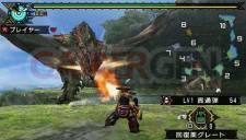 Monster Hunter Portable 3rd 023