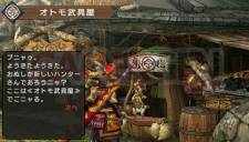 Monster Hunter Portable 3rd Village 009