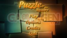 Puzzle-Square-2