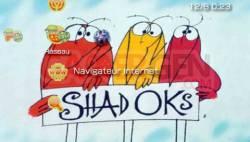 Shadoks - 2