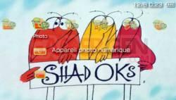 Shadoks - 3