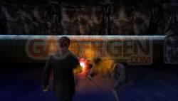 Silent Hill (6)