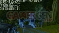 Warcraft PSP Online 002