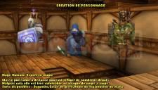 Warcraft PSP Online 004