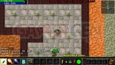 Warcraft PSP Online 008