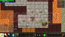 Warcraft PSP Online 010