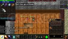 Warcraft PSP Online 012